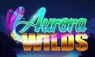 Aurora Wilds